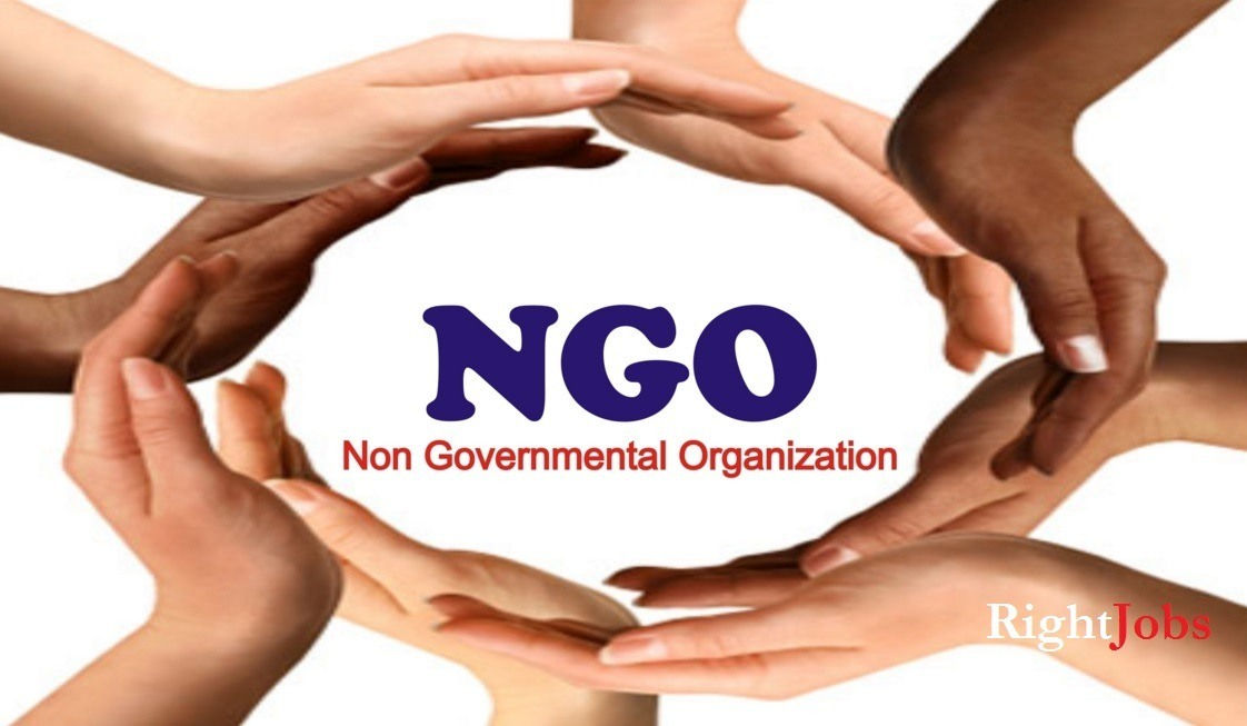 ngos and their role in the